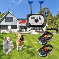 Explore Wireless Electric Fences For Dogs Amazon Com