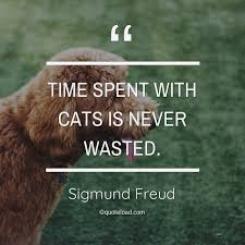 time spent cats is never wasted sigmund freud about pet