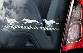 Greyhounds In Motion Car Sticker Greyhound Dog Sign Window Decal Gift Pet V03 Ebay