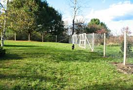 How To Contain Those Pits Best Electric Fences That Might Work For Them