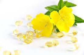 drodon liste plantes medicinales