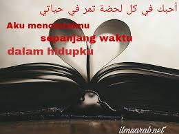 kata kata mutiara arab tentang ilmu quotemutiara quotemutiara