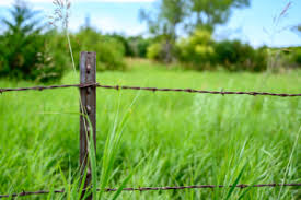 The Best Wild Hog Fence Article Ebook Tejas Ranch Game Fence