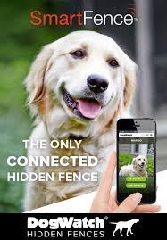 Introducing The Smartfence Pet Fence Dog Training Collar Companion Dog