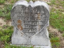 Addie Price Craft (1874-1908) - Find A Grave Memorial