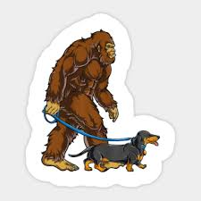 Bigfoot Funny Sasquatch Stickers Teepublic