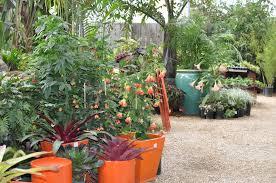 happy french gang blog nursery flora