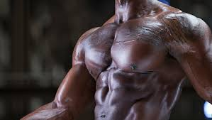 the big chest workout muscle fitness