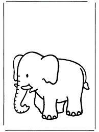 Elephant 3 Zoo