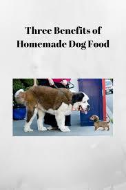 three benefits of homemade dog food