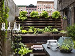 apartment gardening ideas for small
