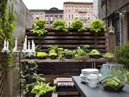 delightful decoration apartment garden