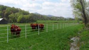 25 Pack Of Poly T Posts 1 75 X 4 5 American Grazinglands Services Llc