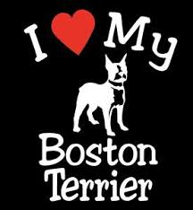 New I Love My Dog Boston Terrier Pet Car Decals Stickers Gift Appealing Signs