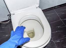 human urine stains from a toilet seat