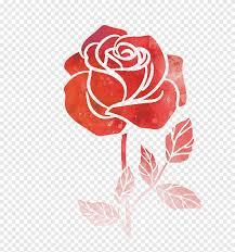 وردة حمراء التوضيح زهرة الرسم بالألوان المائية وردة الرسم