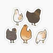 Chicken Stickers Redbubble
