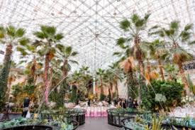 crystal gardens navy pier weddings