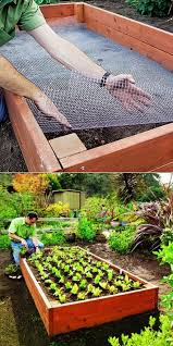 raised bed with en wire