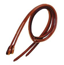 reins saddleupcolorado
