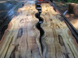 Myrtle Wood tree in Sawmills and Milling