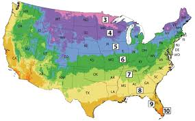 what is your hardiness zone use our