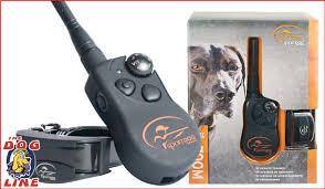 Amazing Sportdog Training Collars Australia Waterproof Remote Trainers