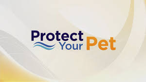 Stephen Carlton Keep Your Pet Safe With Invisible Fence Wkyc Com