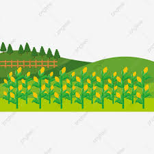 Cartoon Farm Wooden Fence Hay Day Farmland Png And Vector With Transparent Background For Free Download