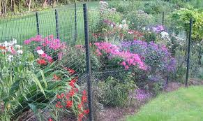 Groundhog Fence For Your Garden Groundhog Proof Your Garden