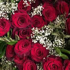 صور ورود رمزيات ورود صور ورد رومانسي Roses