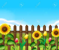 Wooden Fence With Flowers In The Garden Illustration Royalty Free Cliparts Vectors And Stock Illustration Image 60629741
