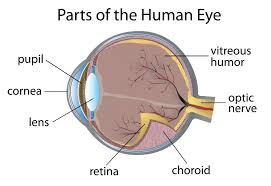 Drug Approved to Treat Diabetic Retinopathy - Diabetes Self-Management