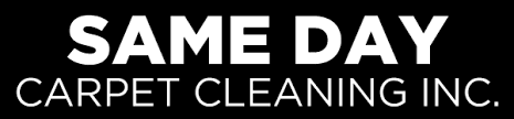 carpet cleaning services ta