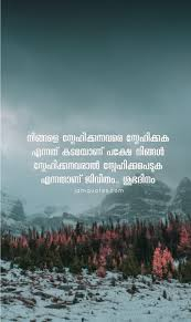 malayalam good morning quotes collection jamquotes