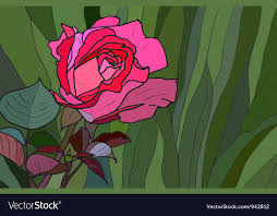 rose stained glass window royalty free