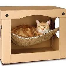 pe lit à votre chat