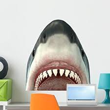 Amazon Com Wallmonkeys Great White Shark Jaws Wall Decal Peel And Stick Graphic Wm172908 24 In H X 24 In W Home Kitchen