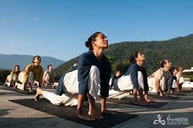 yogabandham immensity of being human