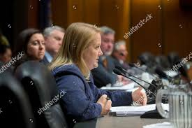 Addie Russell Assemblywoman Addie Russell DTheresa speaks Editorial Stock  Photo - Stock Image | Shutterstock