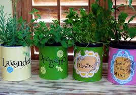 creating a herb garden at home what