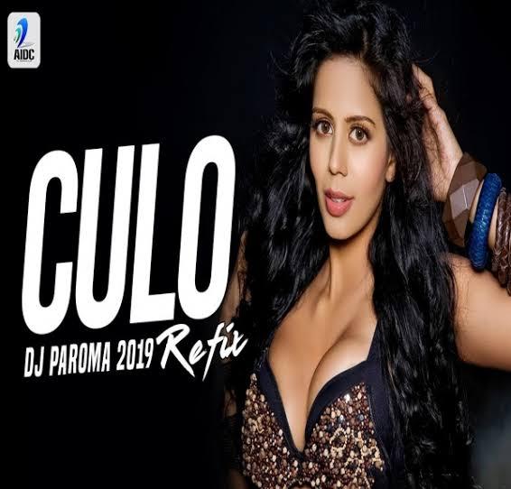Culo (Remix) Pitbull feat. Lil Jon  - DJ Paroma
