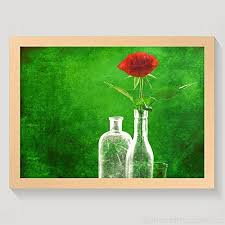 red rose green world picture photo post