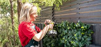 How To Create A Green Wall Using Artificial Hedge Bunnings Warehouse