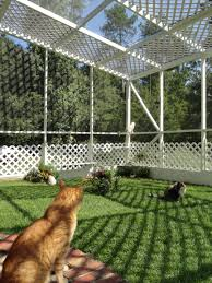 Pin By Craz7catgal On Catio Outdoor Cat Enclosure Outdoor Cat Enclosure Cat Area Cat Enclosure