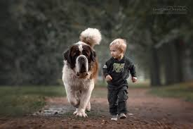 kids-dogs-funny-6 - Holidog Times EN