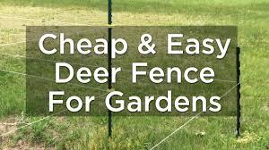 Cheap Garden Fencing To Keep Deer Out Cheap Deer Fencing