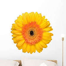 Amazon Com Wallmonkeys Yellow Daisy Wall Decal Peel And Stick Floral Graphic 24 In H X 24 In W Wm261099 Furniture Decor