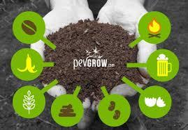 homemade fertilizers for