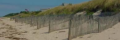 Https Www Mass Gov Doc Stormsmart Properties Fact Sheet 6 Sand Fencing Download